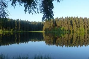 Ferienwohnungen im Harz