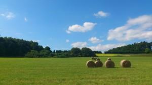 Ferienwohnung im Westerwald
