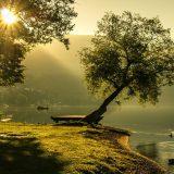 landscape-1192669_1280